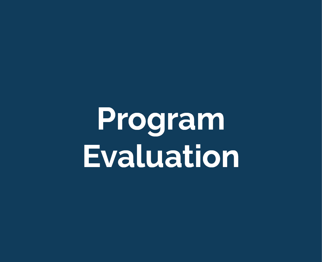 sub-button_program_evaluation
