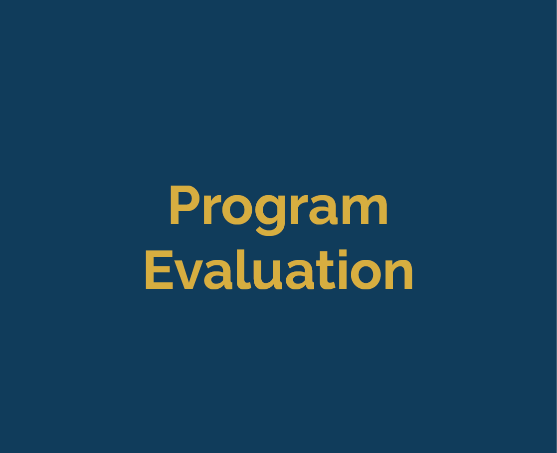 sub-button_program_evaluation2